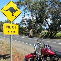 Guided Motorcycle Tour Australia Best Of