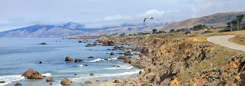 Photo Tours Highway 1