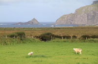 Ireland, Slea Head Area