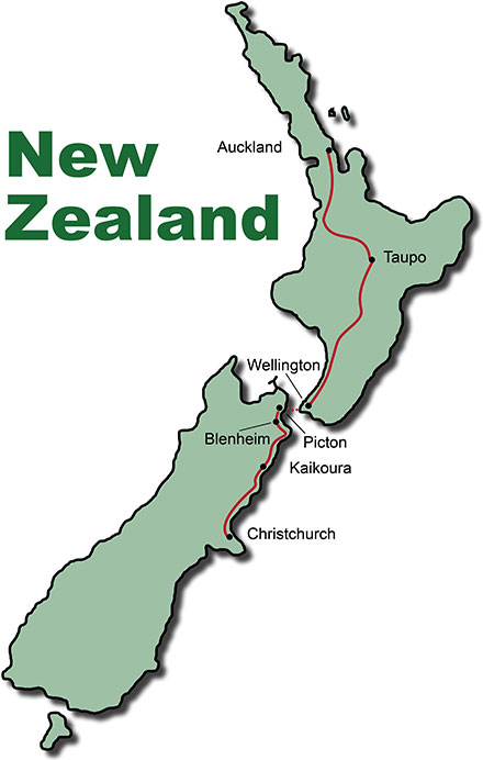 Bus Tour New Zealand Nature