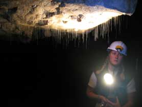 Waitomo Caves Glowworms