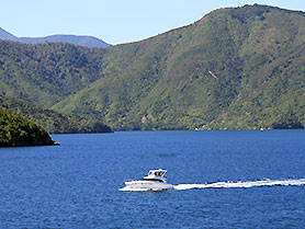 New Zealand, Queen Charlotte Sound
