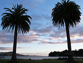 New Zealand, Whitianga