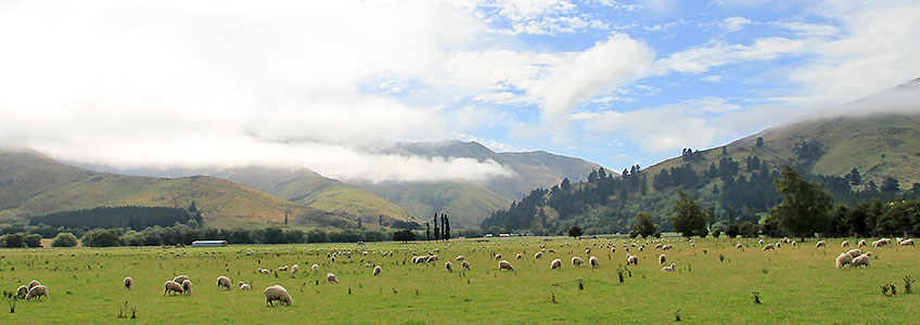 Bus Tours New Zealand South Island